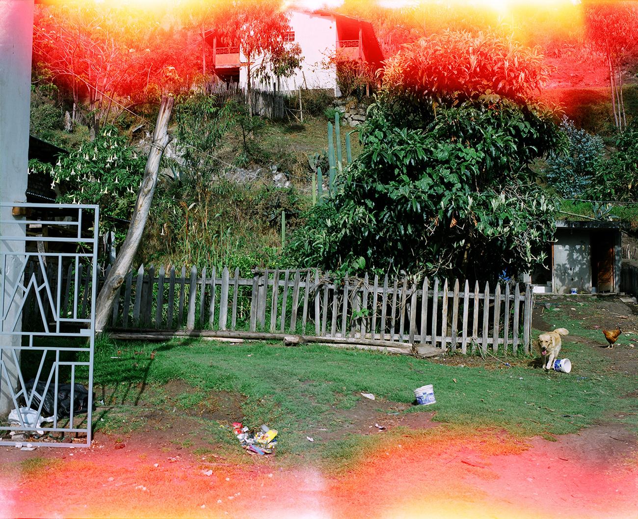 Louidgi Beltrame, Jardín medicinal del Maestro Cipriano