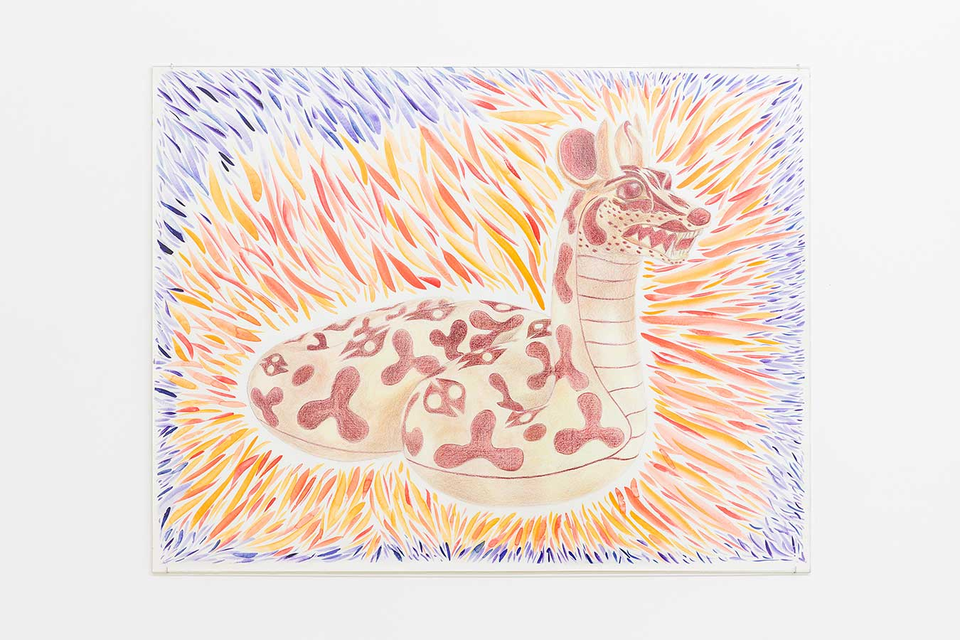 Louidgi Beltrame, La serpienta venado zorro