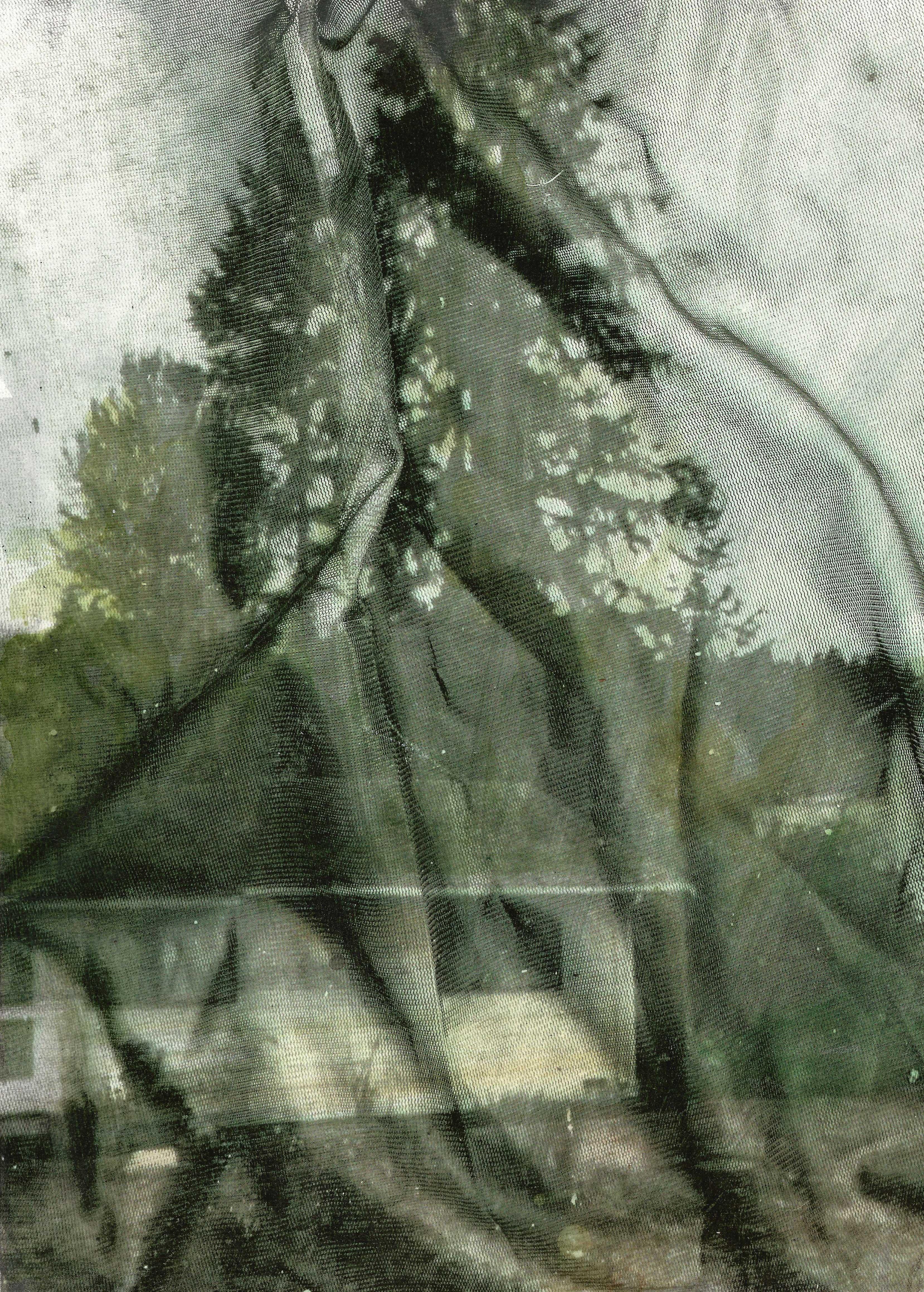 Eva Nielsen_Lucite_2020_40x30cm