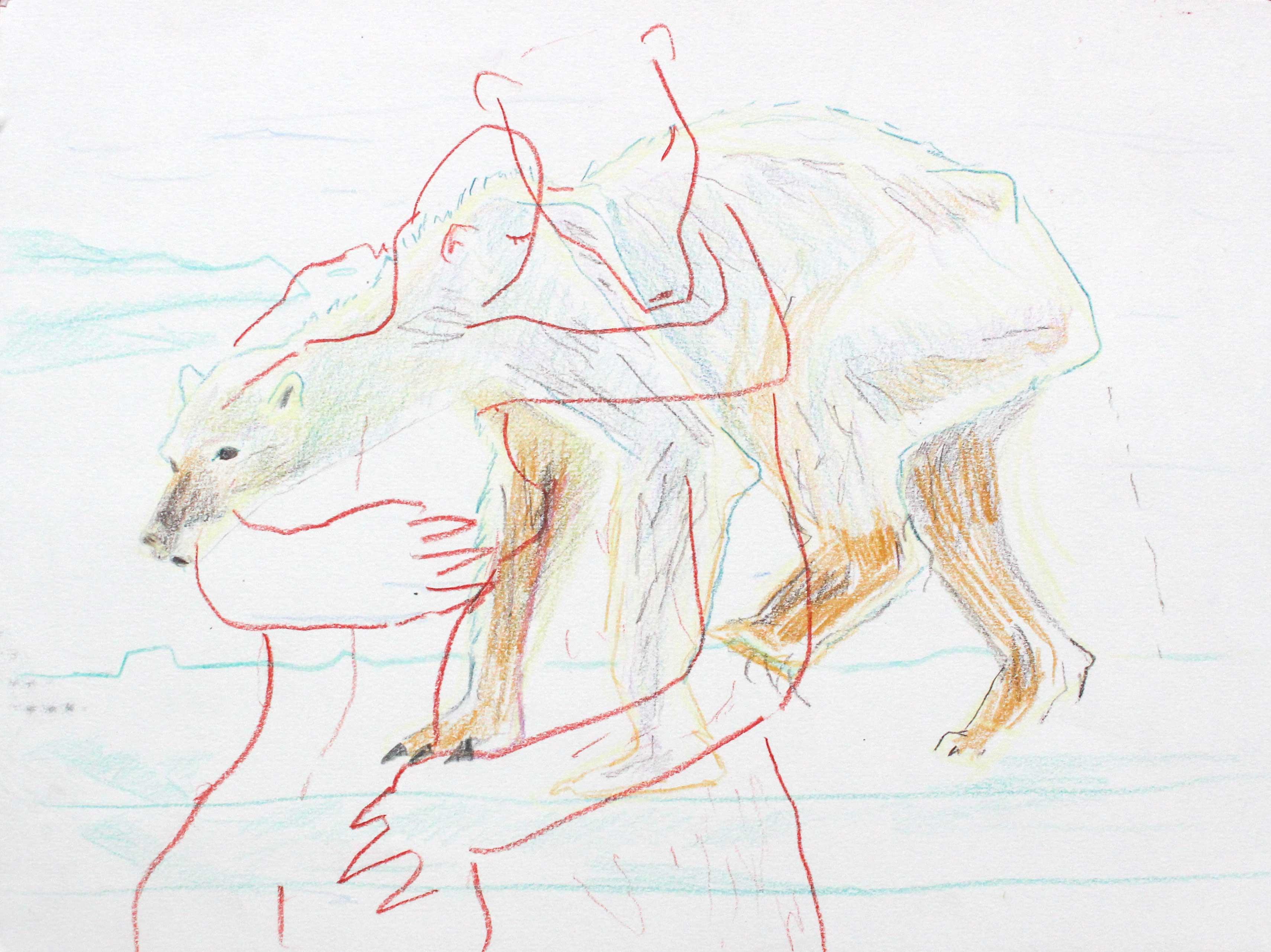 Madeleine Roger-Lacan, Je t'aime (Cet ours décharné m'a fait penser à toi), 2017, coloured pencil on paper, 21 x 29,7 cm
