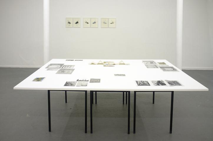 Rometti Costales, Mesa de las Ediciones del Exotismo Ordinario Internacional Neotropical, 2011