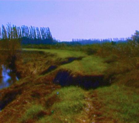 """Ariane Michel, """"Après les pluies"""", 2003, vidéo, son stéréo8'"""