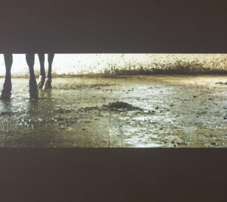 """Clément Borderie, """"Sarabande"""", 2013, vidéo HD, couleur, son, 26'"""