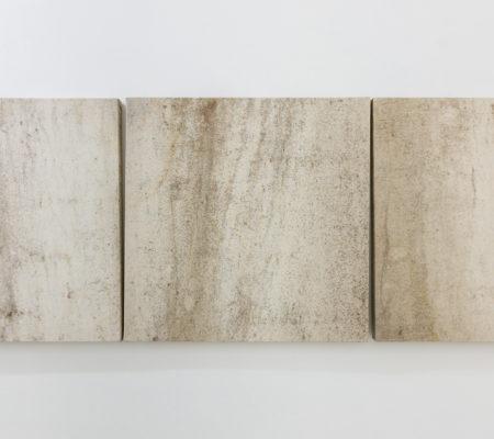 Clément Borderie, série de onze toiles produites autour des troncs des aulnes2001, Wattwillertoile de coton brut,50 x 50 cm