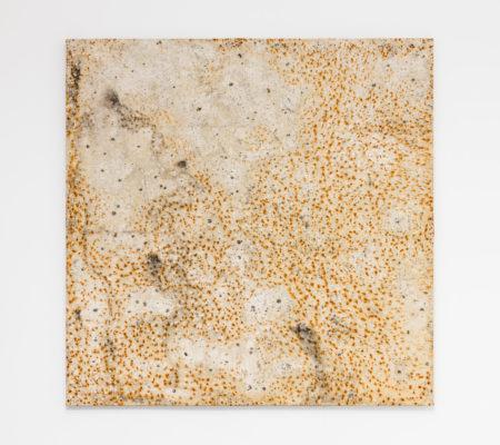 """Clément Borderie, toile produite par la matrice""""Meuse"""",hiver/printemps 2011, Ivry-sur-Seine, toile de coton brut,100 x 100 cm"""