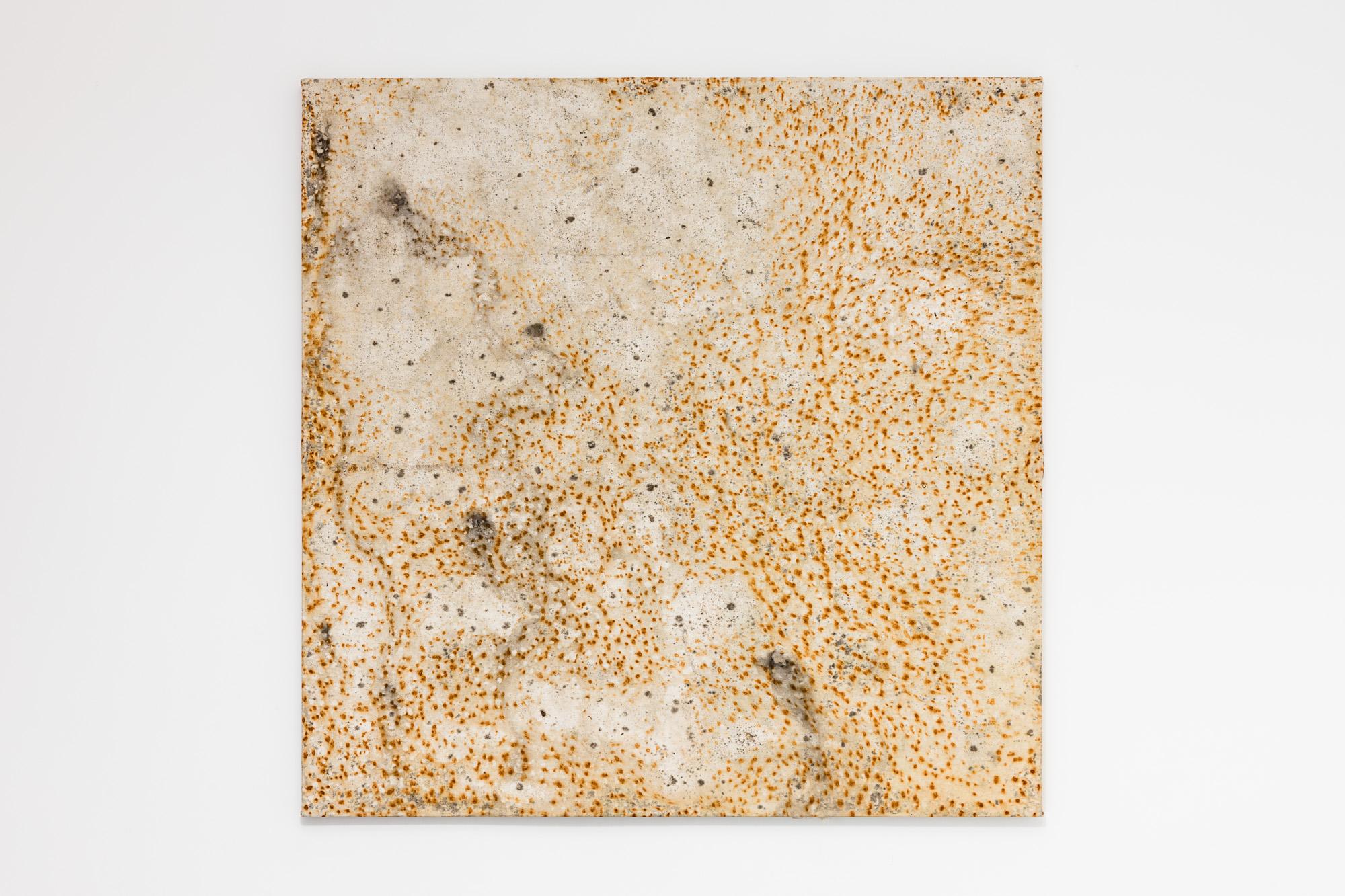 Clément Borderie, toile produite par la matrice