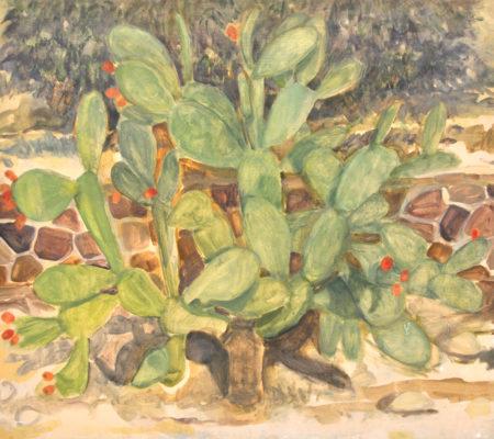 Cactus, Arad, jour, 2018, 38 x 46 cm, huile sur bois_web
